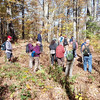 High Knob Hike : Southern Appalachian  Highlands Conservancy and Mountain Air Naturalist and Resident, Kat Dunham enjoyed an interpretive hike in the Old  Growth Preserve easement. High Knob and the surrounding forest preserve are at  the top of Slickrock Mountain, just southwest of Burnsville, in  Yancey County, NC. This hike along Slickrocks ridge line parallels the  high Black Mountain range. On clear days there are  beautiful views of  Celo Knob and Mt. Mitchell, just 8 miles to the  southeast as the crow  flies. The hike was a moderate 4-mile double loop,  with the start and  finish on about 12 mile of paved access roads. It started  at 4,600 feet,  and the most strenuous sections were in the first 10 minutes,  and later  on another 10-minute stretch in the middle, when most of the  roughly 400  feet of elevation change was accomplished. We saw big  trees- especially sugar maple, wild cherry and yellow birch in this  healthy high-elevation mixed-hardwood forest. We enjoyed peak fall color from our lofty vantage point.